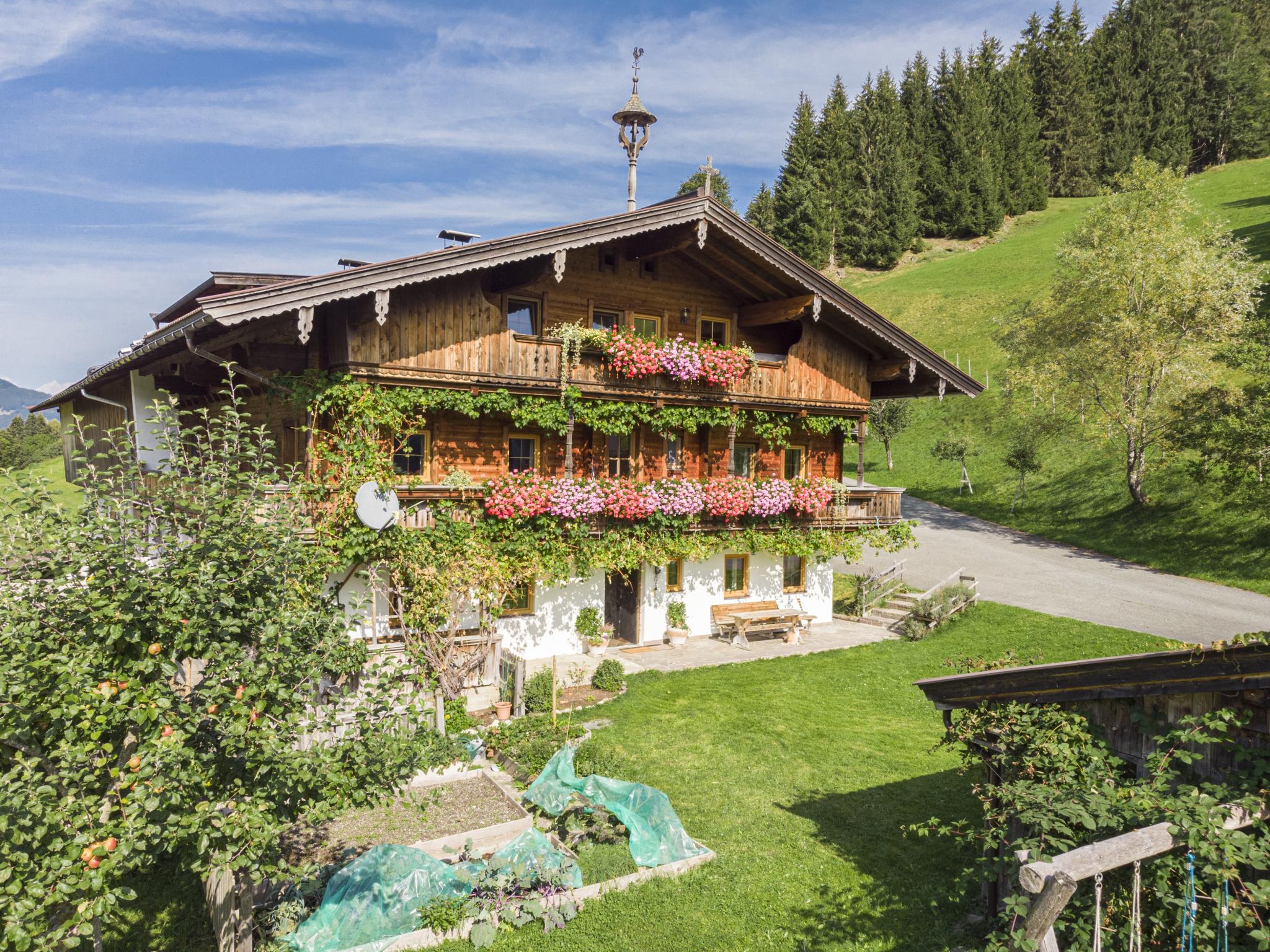 Boar Hof Top 2 Tirol