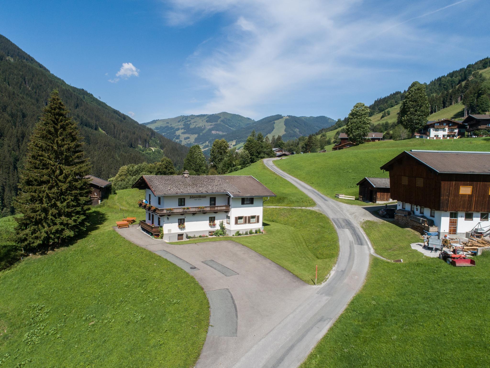 Schwoichbauer II Salzburgerland